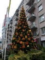 Монтаж и оформление елки для Правэкс-Банка, Киев