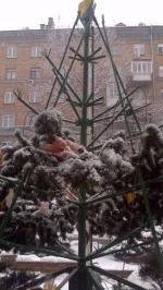 Монтаж и оформление елки для Правэкс-Банка, г. Киев