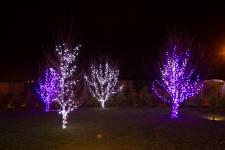 Гирлянда DELUX Curtain 2x1,5м (Штора) 456LED фиолет