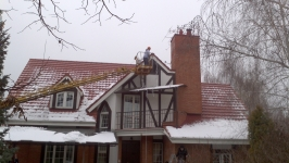 Комплексное оформление дома и елки - Козин