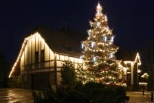 Праздничная иллюминация загородного дома и елки - Козин
