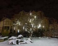 Иллюминация загородного дома, деревьев и елей, Киев