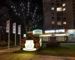 Оформление дерева для салона продаж Стерх, Киев 2017