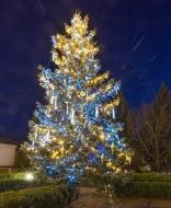 Новогодняя иллюминация и оформление живой елочки