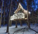 Украшение гирляндами домика на дереве, Киев