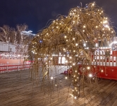 Праздничная иллюминация деревьев, «Містечко зимових розваг» Палац Украина